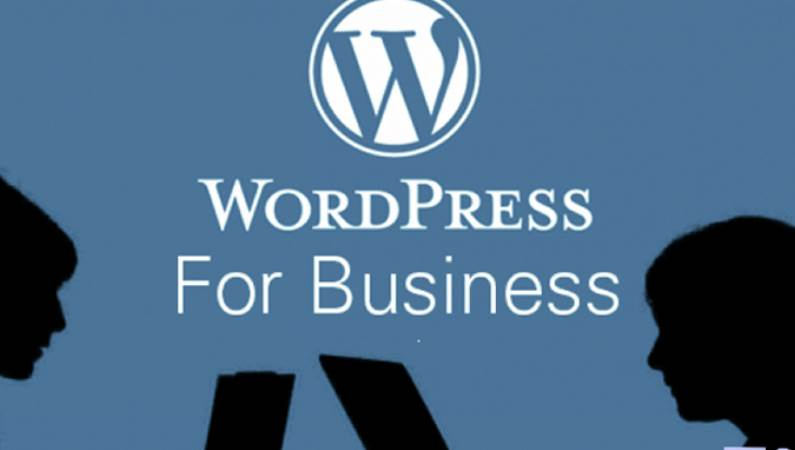 Why You Should Use WordPress In Your Online Business